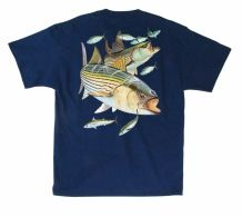 A little striper fishing on the chesapeake bay a man 39 s for Hulk fishing shirts