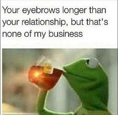 "Community Post: Kermit The Frog's Top 10 ""But That's None Of My Business"" Posts"