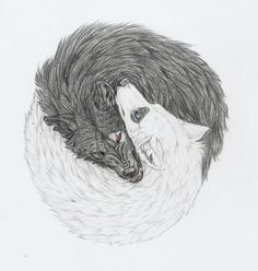 """""""Yin and Yang Wolves"""" A tattoo design requested by He said he wanted a unique tattoo design portraying Yin and Yang with a pure white wolf, and a dirty, vicious, black wolf. Realistically. So at fi..."""