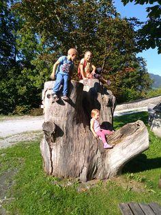 Ein riesiger Baumstamm steht daneben der Parkplatz und die Kinder könnten ihm nicht Wiederstehen. Er lud sie zum Klettern ein. Cowboy Hats, About Me Blog, Posts, Couple Photos, Couples, Beer Garden, Parking Space, Climbing, Hiking
