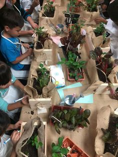 DIY - Garden Boxes: With the sun shining and the warmer weather inviting us all outside, it's no surprise that gardening comes to mind. Garden Planter Boxes, Bored Kids, Best Mothers Day Gifts, Spring Is Here, Fun Activities For Kids, Projects For Kids, Fun Crafts, Classroom Ideas, Gift Wrapping