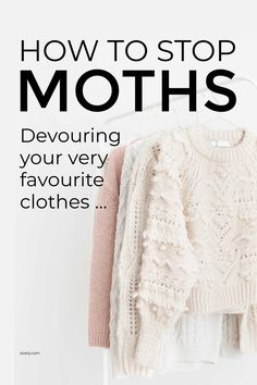 Learn how to stop moths devouring your favourite clothes whether it's your best sweater or your perfect fine cotton tee. These simple pest control tips help to prevent moths and get rid of them. #moths #preventmoths #getridofmoths #pestcontrol Natural Cleaning Solutions, Natural Cleaning Products, Baby Moth, Getting Rid Of Moths, Lay Down The Law, Moth Repellent, Cool Sweaters, Pest Control, Spring Cleaning
