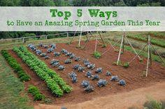How to Prepare Your Garden :: Five Little Homesteaders