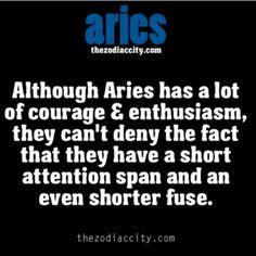 aries #11