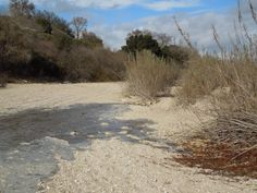My Search for the Salinas River and How it Found me Salinas River, Finding I Am, Dry River, You Know Where, Paths, Country Roads, California, Search, Outdoor
