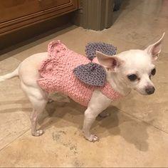 Crochet Dog Harness Dog Dress Small dog clothes Harness and Leash Handmade Pet Harness Dog harness vest Dog Top Pet Clothing BubaDog Small Dog Sweaters, Small Dog Clothes, Puppy Clothes, Crochet Dog Sweater Free Pattern, Knit Dog Sweater, Boston Terrier, Crochet Dog Clothes, Pull Crochet, Cat Harness