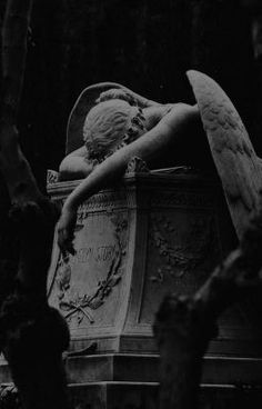 Death Aesthetic, Gothic Aesthetic, Slytherin Aesthetic, Aesthetic Art, Aesthetic Pictures, Black And White Picture Wall, Black And White Pictures, Black Aesthetic Wallpaper, Aesthetic Wallpapers
