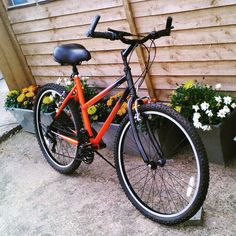 This is the bike that I completely restored from a totally rusted up bike. My wife chose the colours.