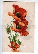 202762 POPPY Flowers by C. KLEIN Vintage Russian postcard