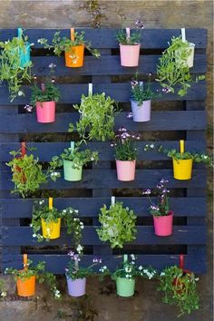 Pallet Garden Ideas Diy, Pallet Garden Walls, Vertical Pallet Garden, Herb Garden Pallet, Diy Garden Projects, Vertical Gardens, Garden Ideas With Pallets, Vertical Planting, Pallet Gardening