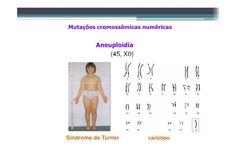 Há um aumento ou diminuição de um ou mais pares de cromossomos, mas não de todos, como por exemplo:  - Trissomia (três cromossomos homólogos, sendo o normal apenas dois); - Monossomia (apenas um cromossomo não acompanhado de seu homólogo).