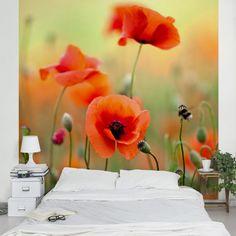 #Vliestapete - Blumentapete Roter #Sommermohn Fototapete Quadrat #Blume #Flower #Blumendeko #Wandgestaltung #Blüte #Pflanze