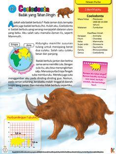 11++ Hewan bison terbang terupdate