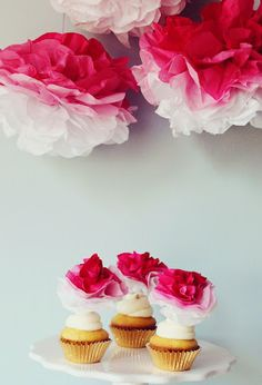 DIY Pink Ombre Tissue Pom Poms & Cupcake Toppers