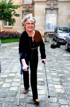 Brigitte Bardot a rencontre Dominique Bussereau au Ministere de l'Agriculture pour lui parler de la condition des animaux domestiques en France et en Europe .Elle a pose avec le ministre puis a repondu a quelques interviews. Paris, FRANCE - 11/05/2006.