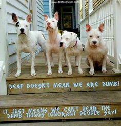 Deaf doesn't mean we are dumb!! It just means that we can't hear the dumb things ignorant people say!!