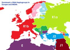 The map above shows what the borders of Europe, the Middle East and North Africa might look like if they were based on the Y-DNA haplogroup rather than ethnicity and/or any other political considerations.