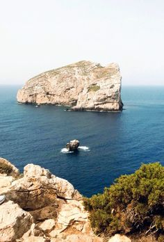 Capo Caccia, Alghero, Sardinia. Alghero, Visit Italy, Beach, Pictures, Outdoor, Italy, Sardinia, Photos, Outdoors