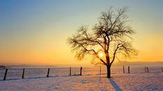 PRANOSTIKA NA PIATOK 3.2.:  Na sv. Blažeje slnko ešte nehreje
