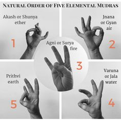 The Secret Life of the Body: Mudras- Day 9 - Meditation For Non-Meditators Meditation Exercises, Yoga Mantras, Yoga Meditation, Kundalini Yoga, Pranayama, Acupuncture, Instruções Origami, Hand Mudras, Qi Gong