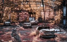 Chernobyl Exclusion Zone Photography