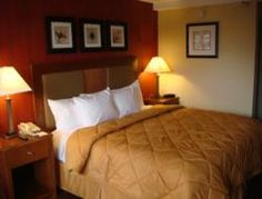 Comfort Inn Riverfront