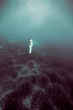 Enric Adrian Gener. Fotografía subacuática