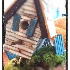 Birdhouse creation