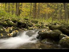 Krzesimir Dębski - Dance from Sudety Mountains for symphony orchestra (2...