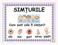 simturile Preschool Education, Preschool Worksheets, Kindergarten Activities, Kids Poems, 1st Day Of School, Indoor Activities For Kids, School Decorations, Educational Games, Working With Children