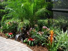 landscaping ideas palms by the pool Tropical Garden Design, Tropical Landscaping, Landscaping With Rocks, Modern Landscaping, Backyard Landscaping, Landscaping Ideas, Florida Plants, Pool Landscape Design, Coastal Gardens