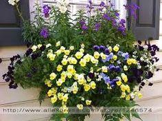 Resultado de imagem para jogo casual de plantação  de flores