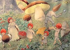 Tomtebobarnen    Mushroom Children Harvest Mushrooms  Artist: Elsa Beskow  From the book Children of the Forest