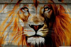 Unique Lion Graffiti On Wall,Framed African Lion Painting Prints on Canvas,Framed on Wood Bars,Lion Poster Prints for Home Wall Decor,Attractive Animal Wall Decoration Lion Painting, Painting Prints, Canvas Prints, Paintings, Lion Poster, Graffiti Wallpaper, Lion Art, Print Pictures, Frames On Wall