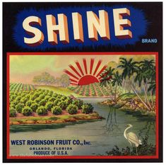 SHINE Vintage Florida Citrus Crate Label