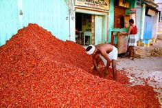 Red Chilli's Madurai, India Madurai, Red Chilli, World Photography, Harvest, Pepper, Two By Two, Around The Worlds, India, Red Chili