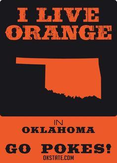 I LIVE ORANGE ~ Oklahoma State University
