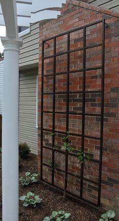 4 x 8 wall trellis - garden metalwork.com