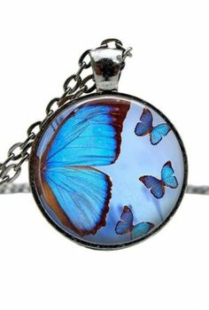 Blue Butterfly Necklace I'm this is beautiful!