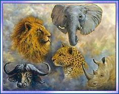 "The ""Big 5"" refers to the great wild beasts of Africa - all of which can be found in South Africa: Lion, Elephant, Leopard, Rhino and Buffalo"