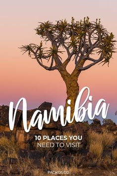 10 places you need to visit in Namibia. This incredible country is full of breathtaking natural wonders and impressive wildlife, and these are 10 places you do not want to miss in Namibia. Make sure your trip has at least a couple of these incredible sights in your itinerary! #Namibia #Travel #TravelTips | Padkos.co
