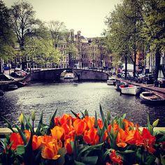 Amsterdam în Noord-Holland