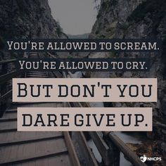 Never give up.                                                                                                                                                       More                                                                                                                                                                                 More