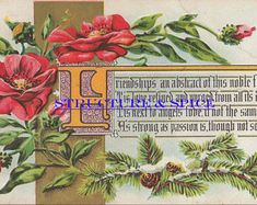 Digital Library: Antique Edwardian Era Postcard With Friendship Message Shared in a Lovely Poem Surrounded By Roses. Card is Circa - Edit Listing - Etsy Vintage Birthday Cards, Vintage Christmas Cards, Vintage Cards, Vintage Postcards, Friendship Messages, Birthday Roses, Happy Birthday, Edwardian Era, Winter Cards