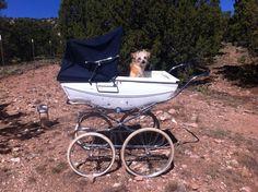Vintage Silver Cross Pram Baby Carriage Tenby?