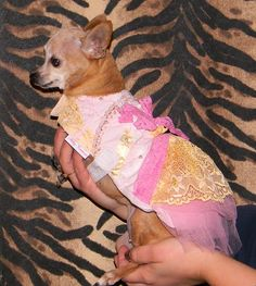 Items similar to Chihuahua dog dress, handmade on Etsy Pink Tulle, Tulle Lace, Dog Dresses, Chihuahua Dogs, Palm Beach Sandals, Little Princess, Pearl Beads, White Lace, Cotton Fabric
