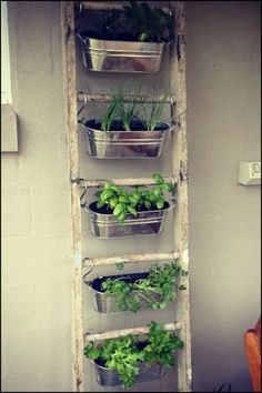 Kitchen:Metal Wall Planters Indoor Ikea Hanging Plant Holder Wall Herb Garden Ik… - All For Herbs And Plants Small Patio Spaces, Small Space Gardening, Garden Ideas For Small Spaces, Small Yards, Outdoor Spaces, Apartment Herb Gardens, Balcony Herb Gardens, Apartment Gardening, Vertical Herb Gardens
