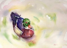 Duck on a pond painting original watercolor on by mariaswatercolor, $40.00