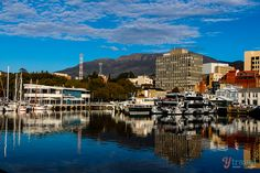Looking for tips on what to do in Hobart, Tasmania? We spent 6 days exploring Hobart, here are our suggestions for things to do and where to eat and sleep. Beautiful Places To Visit, Cool Places To Visit, Places To Travel, Travel Destinations, Amazing Places, Vacation Places, Travel Around The World, Around The Worlds, Best Beaches To Visit