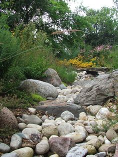 Dry stream bed with natural stone foot bridge